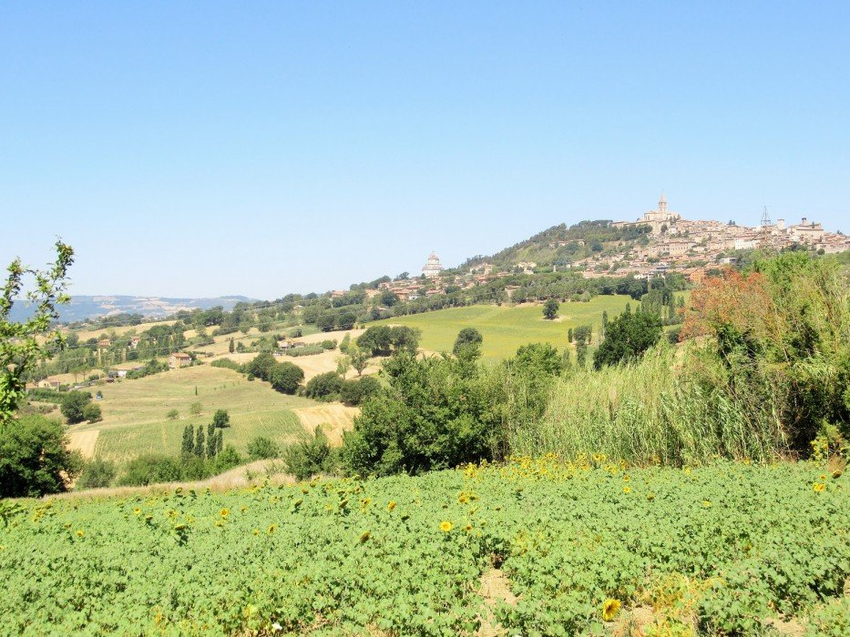 For sale Building land in Todi excellent location